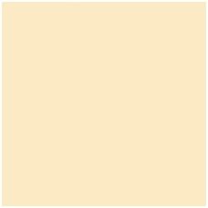 55514 Medvilninis audinys   (plotis 220 cm)