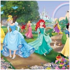 Vaikiški tapetai  Disney Princesės