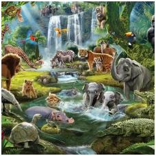 Vaikiški tapetai  Džiunglės