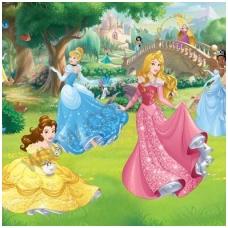 Vaikiški tapetai  Disney Princesės 43800