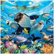 Vaikiški tapetai  Nuotykiai jūroje